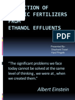 Production of Organic Fertilizer From an Ethanol Effluents