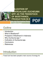 Utilization of Makroalgae Eucheuma Spp