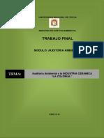 TRABAJO FINAL AUDITORIA AMBIENTAL AA.pdf