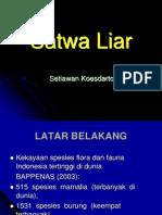 Satwa Liar