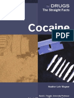 Drugs the Straight Facts, Cocaine Optimized