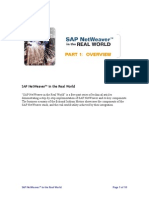 SAP in Real World 1.pdf