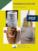 Forgotten Mushrooms of Ancient Peru