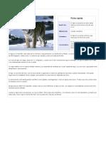 Animales Con Su Informacion