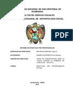 Informe de Practicas Preprofesionales 2013