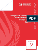 Indigenous People and the United Nations 2013