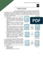 Patologia08 Degeneraes Medresumos Arlindonetto 120627023948 Phpapp01