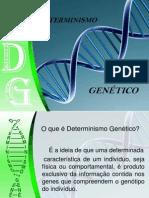 Determinismo Genetico Final