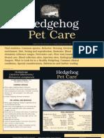 Hedgehog Pet Care