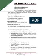 TDR SEGURIDADA CIUDADANA.docx