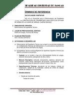 TDR-PAVIMENTADO PLAZA DE ARMAS LADO OESTE.docx