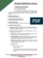TDR MURO DE CONTENCION PUEBLO LIBRE DE CAHUSH.docx