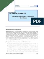 2.1. Eficiencia Tecnológica y Eficiencia Económica