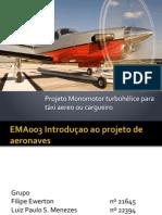 Projeto Ema 003