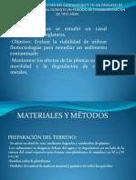 CAMBIO DE LA MOVILIDAD DEL CONTAMINANTE EN UNfff.pptx