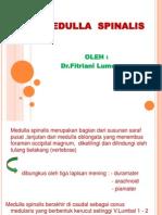 K4-medulla spinalis (anatomi).ppt