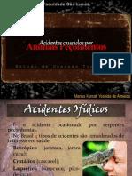 Acidentes por Animais Peçonhentos - Estudo de Patologias Tropicais