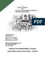 Lg Marketing Project Report