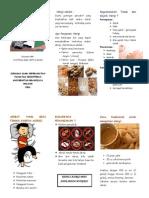 Leaflet Alergi