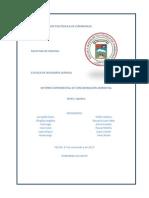 Informe Contaminacion Ambiental (Autoguardado)