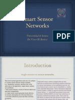 Smart Sensor Network
