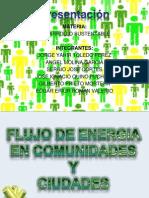 Flujo de Energia en Comunidades y Ciudades (1)