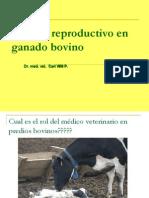 Ginecología 2011