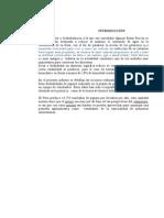 Informe de Procesam.de Fruta Dshidratada