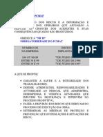 Modelo Pcmat