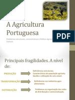 A Agricultura Portuguesa (1)