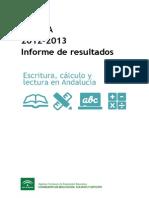 Informe Escala 2013