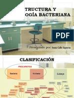 MORFOLOGIA BACTERIANA (1)
