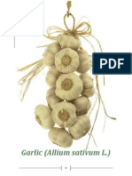 garlic research paper