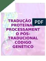 tradução protéica
