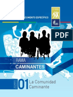 CAMINANTES 1