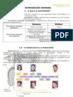 2 - Ficha Informativa -  Tranmissão de Vida