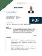 Curriculum Vitae - CV - Planner - Estrategico - Creativo - Curioso - Observador - Publicista