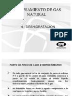 Pgn Iapg 4 Deshidratacion-bn