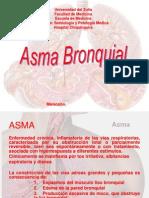 asma 2009