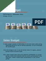 24201324 Sales Budget