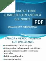 Tratado de Libre Comercio Con Amrica Del Norte Ii1 1223660619074807 9