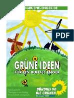 wahlprogramm der Engeraner Grünen (lang)