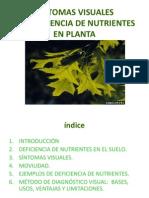 Deficiencia de Nutrientes en Planta Prof