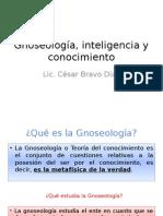 7. Gnoseologia Inteligencia y Conocimiento