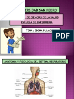 Edema Agudo Del Pulmon