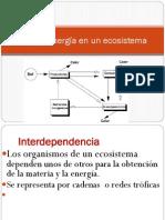 Flujo la energia en un ecosistema.pdf