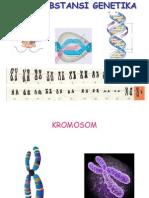 Bab 3 Substansi Genetika.ppt Perbaikan