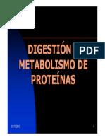 CM7+Digestion+y+Metabolismo++de+Proteinas+RBB