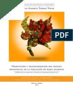 Producción y Transformación del espacio residencial de la PBI