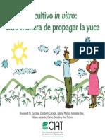 El Cultivo in Vitro Otra Manera Propagar Yuca